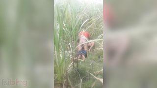 Bihari outdoor sex MMS movie scene captured by a voyeur