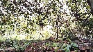 Outdoors Desi muff porn video