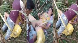 Desi field sex video of a village Randi with her customers